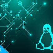 Today's Offer: Pay What You Want: The Linux Mastery Bundle Image